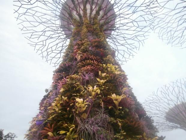 It's a tree made of plants...