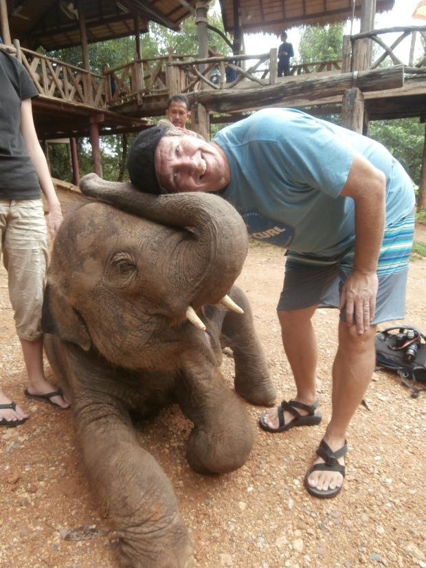 Kanchanaburi elephants