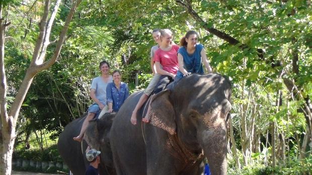 Thom's elephant camp